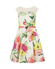 IBERIS Floral printed dress Ted Baker £199