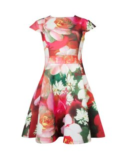 Rose on canvas print dress ROZIEY Ted Baker £139